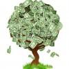 All'albero unico del profitto
